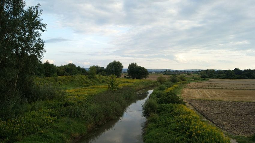 Rzeka Dłubnia
