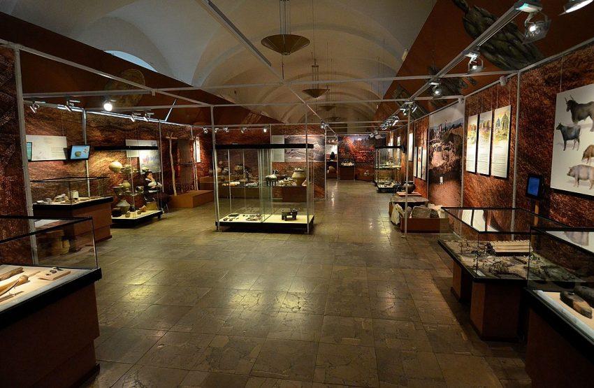 Muzeum Archeologiczne w Warszawie