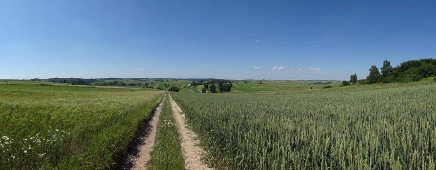 Teren Bitwy Racławickiej